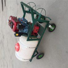 手推车式高压喷雾器 稻田麦地拉管打药机 四冲程喷药机