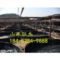 http://himg.china.cn/1/4_557_1029741_399_300.jpg