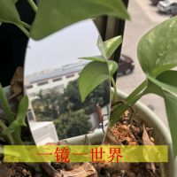 东莞迪迈镜片公司专营亚克力、PS、pc高头光率透明板材/高清镜面板材