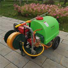 精品道路地面除尘清洗机 高压远程喷雾打药机 推拉式的汽油喷药机
