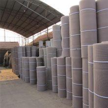 过滤用塑料网 塑料平网 平网养殖防护网