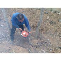 挖树机性能稳定 大马力铲头挖树机 浩发