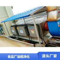 食品加工油烟净化设备 油烟净化专用 铂锐厂家定制特价