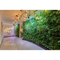 植物墙做法-水培植物墙自动灌溉系统详解