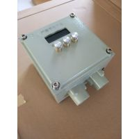 粉尘防爆显示器ExtD A21 IP65
