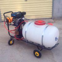 高压拉管打药机 农用杀虫喷雾器 普航牌400升打药机厂家