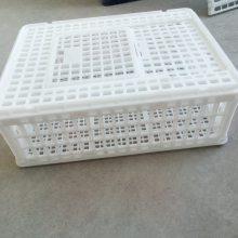 27高方形鸡笼 拉鸡筐 优质塑料毛鸡笼子