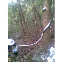 渠道科技 QT-H缠绕型树干截流记录仪