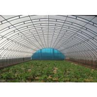 供应温室玻璃暖棚热镀锌种植蔬菜面积广泊头强骏温室