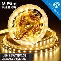 LED灯带5050幻彩亮芯片10MM IP67 60灯珠低压12V防水软灯条批发
