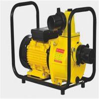 东兴电动抽水泵 电动抽水泵ITEM DSU-80D代理