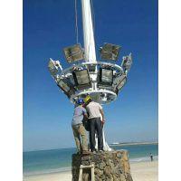深圳道路灯杆定制 柏克灯杆厂家定制农村照明灯杆 各种高度灯杆直销