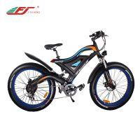 500W 750W 1000W 后置中置电动自行车