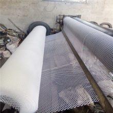 聚乙烯塑料平网 浙江塑料平网 pe养殖网