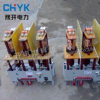 ZN3-10/630A户内高压真空断路器 ZN5-10KV高压真空开关