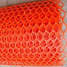 雏鸡养殖网 养鸡塑料网厂 塑料平网批发