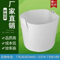 河南花盆容器美植袋大量供应 厂家直销植树袋营养钵 无纺布园林白色育苗袋