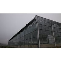 芳诚温室阳光板大棚,专业质量保证,抗风好