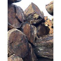南美琥珀木 胡桃木原木