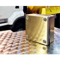 不锈钢接线盒 防水端子箱 304不锈钢电箱 威图KL箱