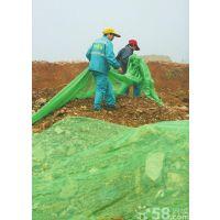山东环保绿色防尘网绿色乙烯盖土网质优价廉现货供应