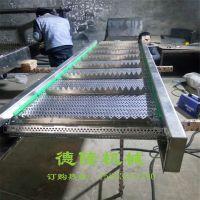 304不锈钢链板冲孔输送机 板链运送机 德隆非标定制 自动化输送设备 豆芽传送机