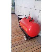 供应PY4/100推车泡沫罐半固定泡沫灭火设备