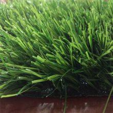 人工假草坪 沈阳假草坪 人造草皮地毯