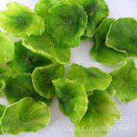 脱水我莴笋干 干莴苣 脱水蔬菜 高优质产品 绿色健康/ 顶能食品 东莞办事处