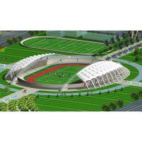 厂家定做大跨度膜结构体育场馆张拉膜篮球场棚PVDF学校操场膜结构工程