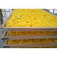 润泽定制箱式菊花恒温烘干机 多效热风循环菊花烘干设备