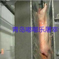 屠宰机械设备猪屠宰洗猪机13.3厂家直销国标材质