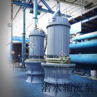 900QZB-100T高电压潜水轴流泵厂家
