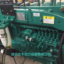 潍柴机组WPG275L8配置蓝擎WP10D264E200发动机200千瓦发电机组