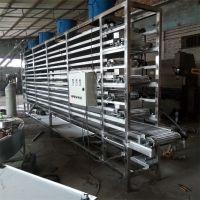 强盛厂家直销网带式多层输送机 网链式直行输送流水线
