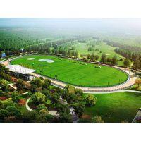 人造草足球场材料 体育室外地面材料 专用操场地面 户内外塑胶场地