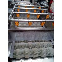 供应昊昌草莓清洗机 高压喷淋清洗机 高压气泡清洗机
