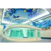 北京天津豪华玻璃泳池儿童游泳池 儿童透明玻璃池生产厂家