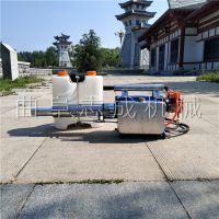 促销机械280W果园除虫烟雾机 双管水冷的汽油动力弥雾机 雾化好的杀虫机