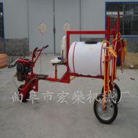 滨海县生产大型喷药机 自走式高压喷雾器 大田三轮驱动打药机现货