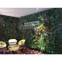 哪有仿真绿植墙厂家?西安绿琴 高档植物墙 pu尤加利打底假植物 公司前台装饰绿化