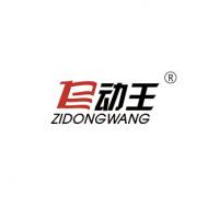 东莞市天车汽车技术有限公司