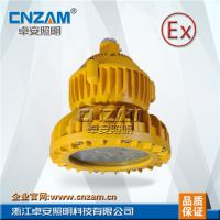 ZBD102-I LED免维护防爆灯