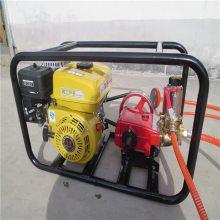 多喷头高压喷雾器报价 润众 果园苗圃灭虫防疫喷雾器