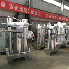 安徽阜阳新式家用榨油机 全自动快速液压榨油机技术培训