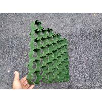 广州厂家直销植草格消防通道50高植草格