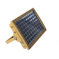 厂家直销 松大照明 CCD97-Z LED免维护防爆灯