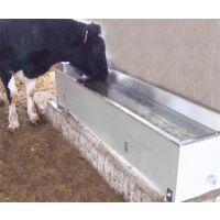 不锈钢饮水槽,牛饮水槽生产厂家,甘肃宾利达