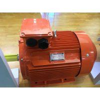 Y2D系列双速电机Y2D 180L-4/2 18.5/22kWZODA中达电机