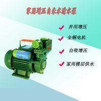 家用自吸泵1ZDB-45广东凌霄微型电动清水抽水泵
